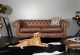 Chesterfield Sofa Bennet Bild 2